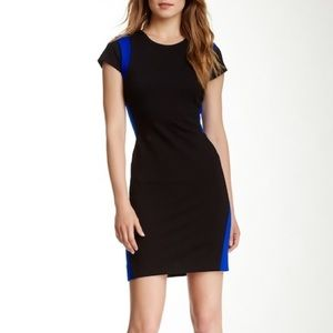 Diane von Furstenberg Pele Cap Sheath Dress